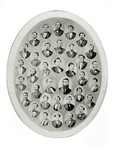 Class of 1871, Indiana University School of Law