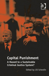 Capital Punishment A Hazard to a Sustainable Criminal Justice System? (edited by Lill Scherdin) by Jody L. Madeira